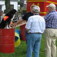 Rettungshunde Pinneberg | Wiesenfest Moorrege
