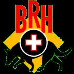 brh_icon_256